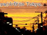 Tokyo slam Sanya